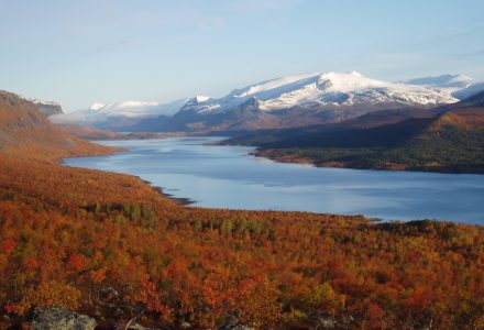 Stay in Laponia World Heritage at Stora Sjöfallet Mountain Center