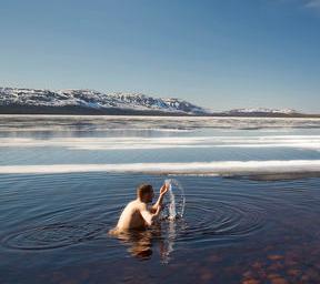 Arctic Feelgood